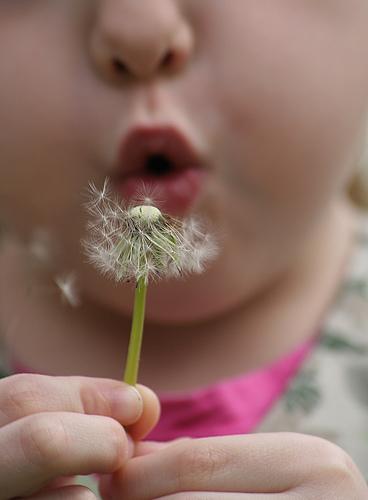 alergias infantiles 1