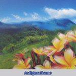 El astigmatismo es la vision borrosa de los objetos de cerca o de lejos