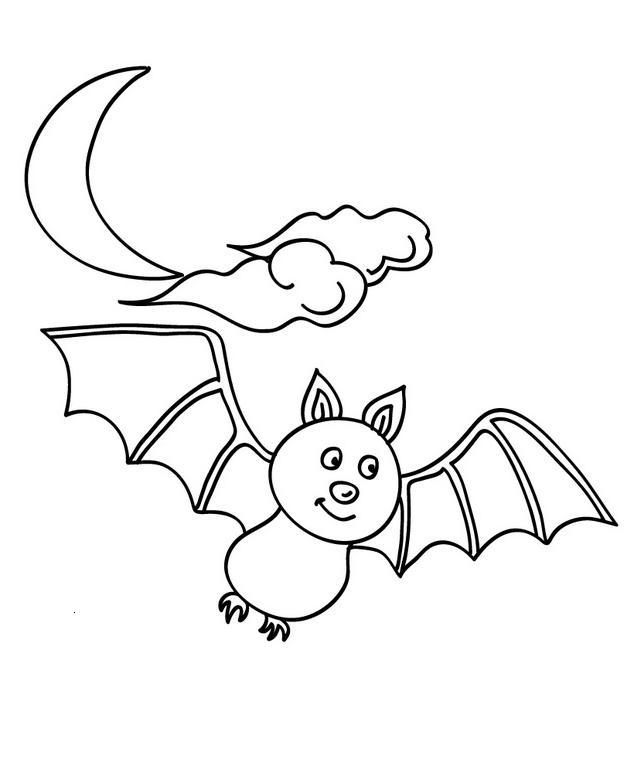 Cuentos y leyendas: el murciélago de colores | Cuidado Infantil