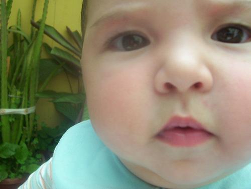 Alimentaci n del beb de 7 meses desarrollo del beb mes a mes - Alimentacion bebe 7 meses ...